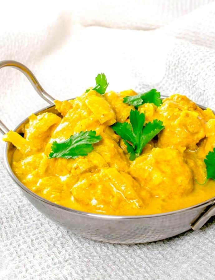 Actifry Chicken Korma Curry