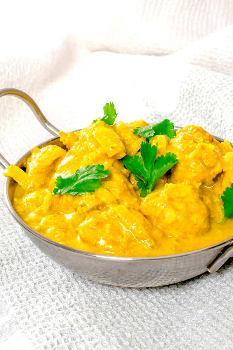 Actifry Chicken Korma Curry | Hint Of Helen-19