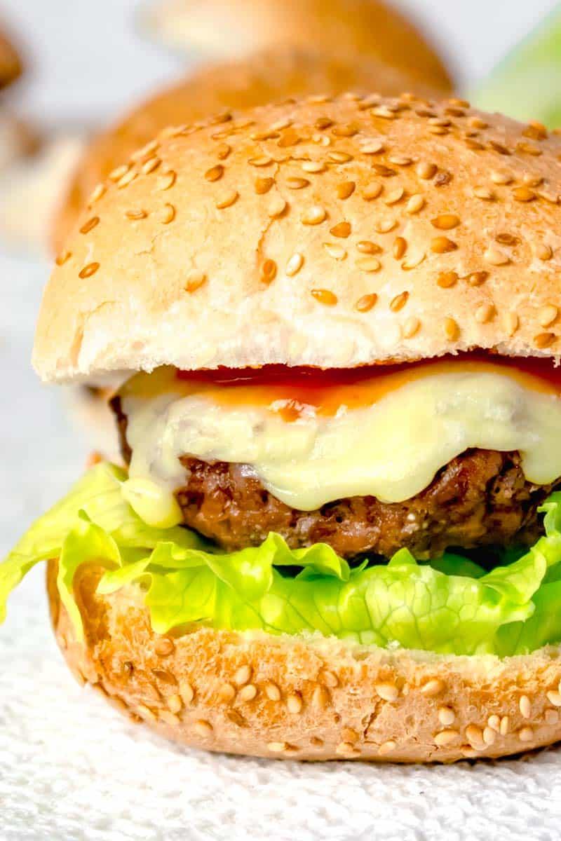 Actifry Cheese Burger Recipe | Hint Of Helen