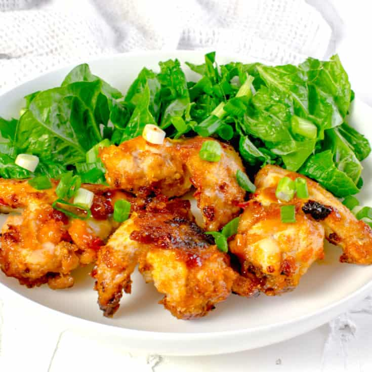Actifry Sticky Chilli Wings
