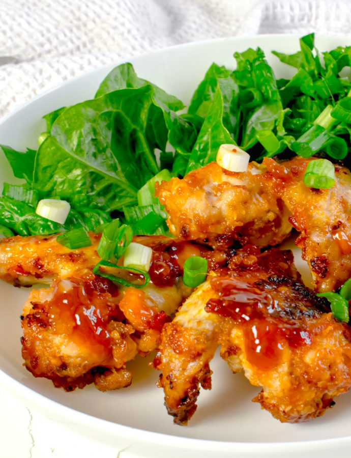 Actifry Sticky Chilli Chicken Wings