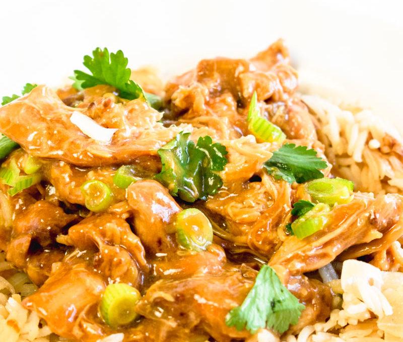 Slow Cooker Teryaki Chicken Thighs