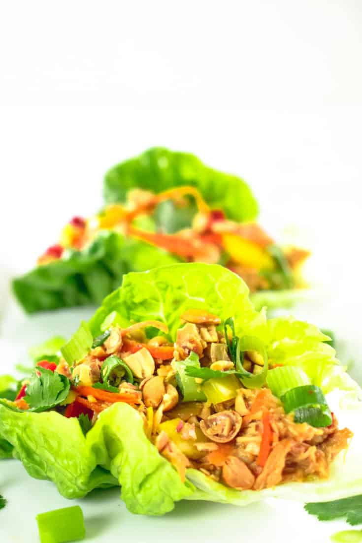 Slow Cooker Satay Chicken Lettuce Cups Recipe | Healthy