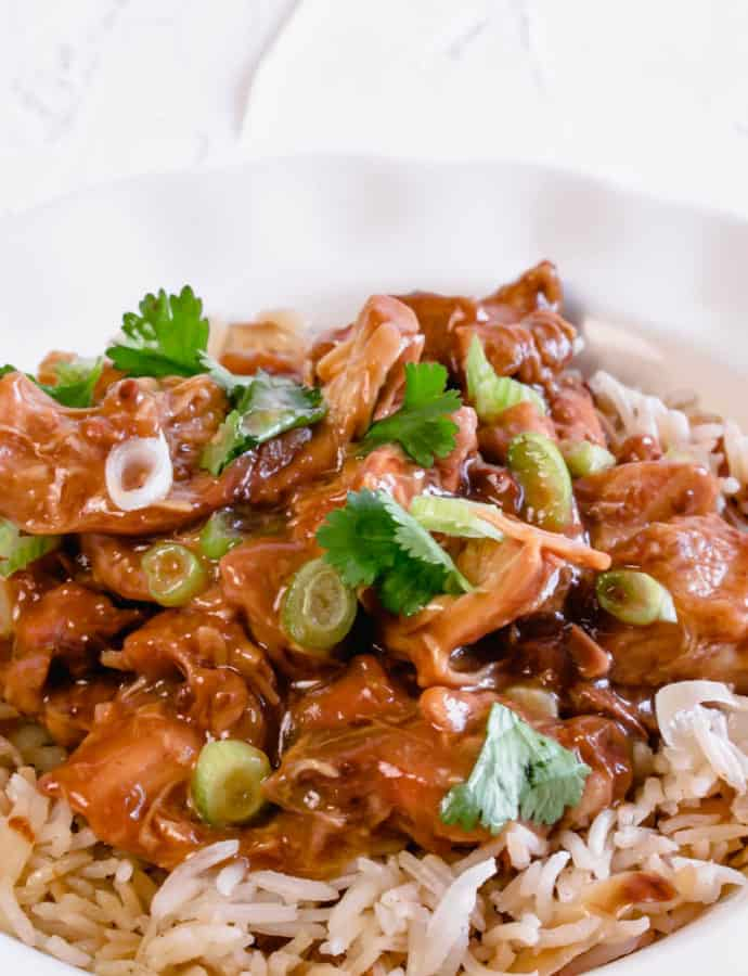 Slow Cooker Teryaki Chicken Thighs