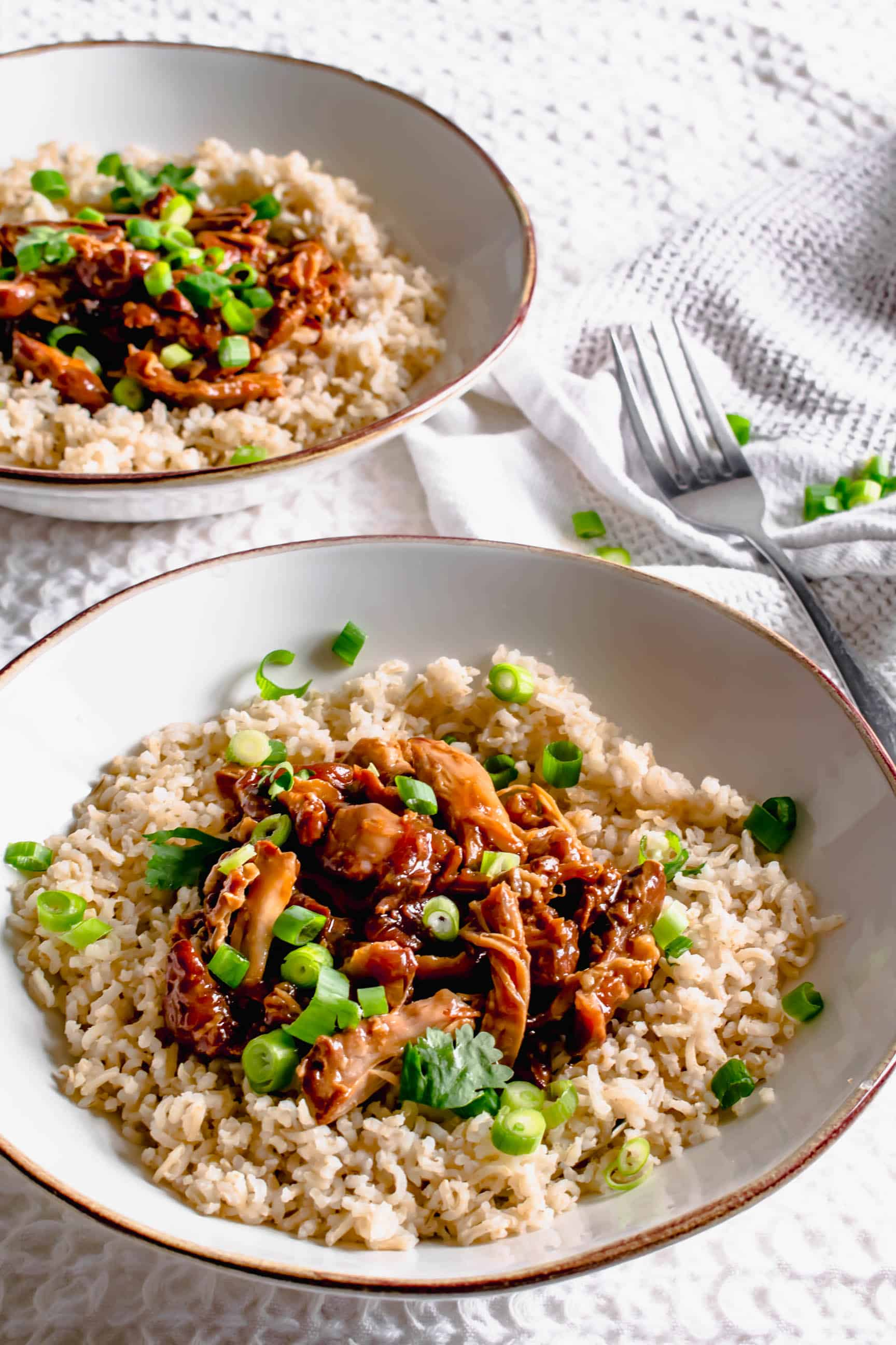 Slow cooker Teryaki Chicken Recipe | Hint of Helen