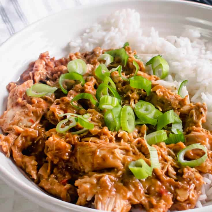 Slow Cooker Chinese Chicken Curry