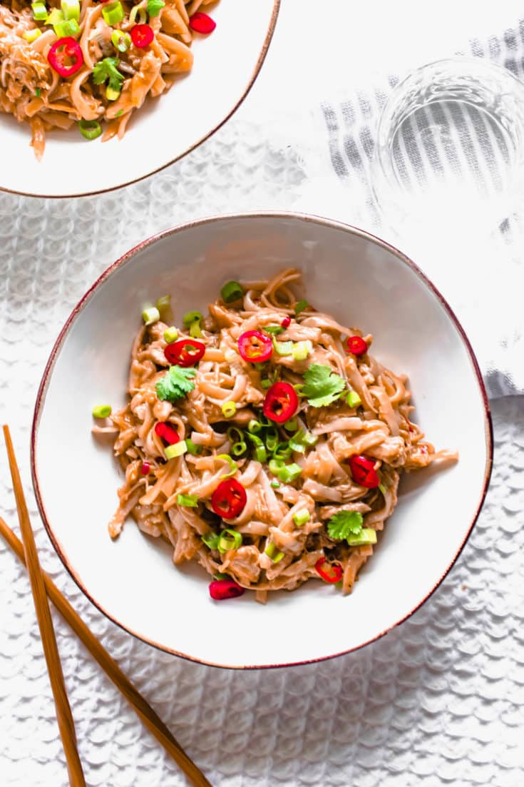 Slow Cooker Chicken Noodles